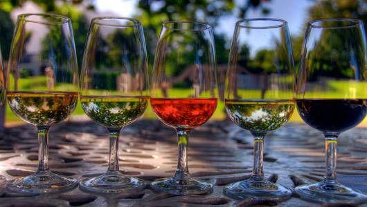 5 clubes de vinos orgánicos del mes para probar