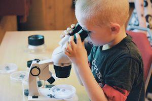 Little boy looks in a microscope