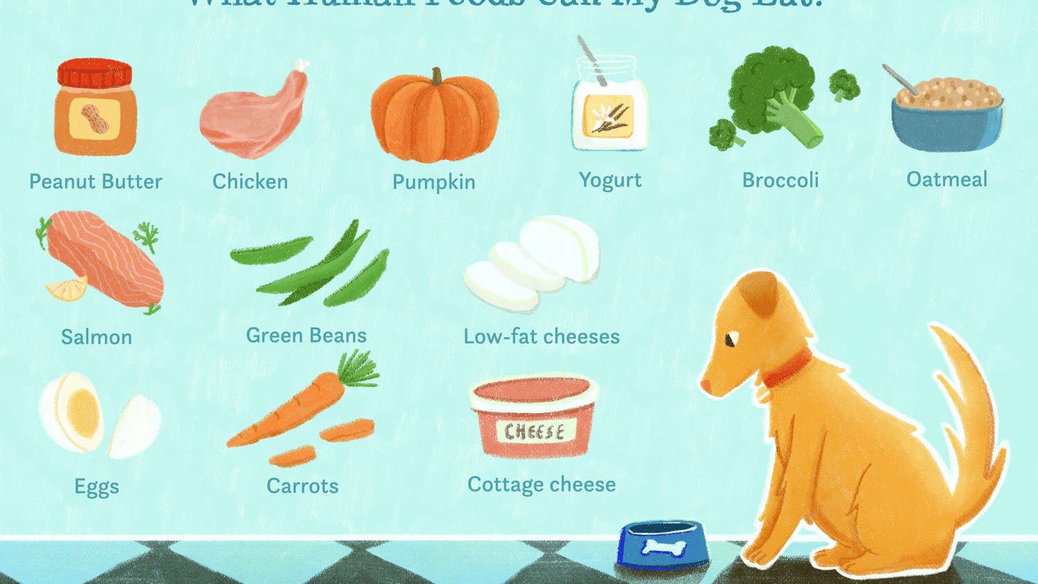 12 Human Foods Dogs Can Eat And 5 They