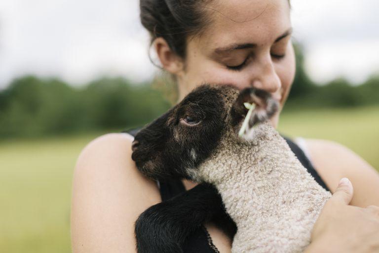 A white woman cuddles a baby lamb.