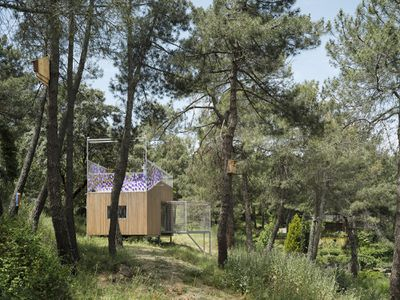 (Synanthro)Love Shack, (Tele)Working Abode by Husos Architects exterior