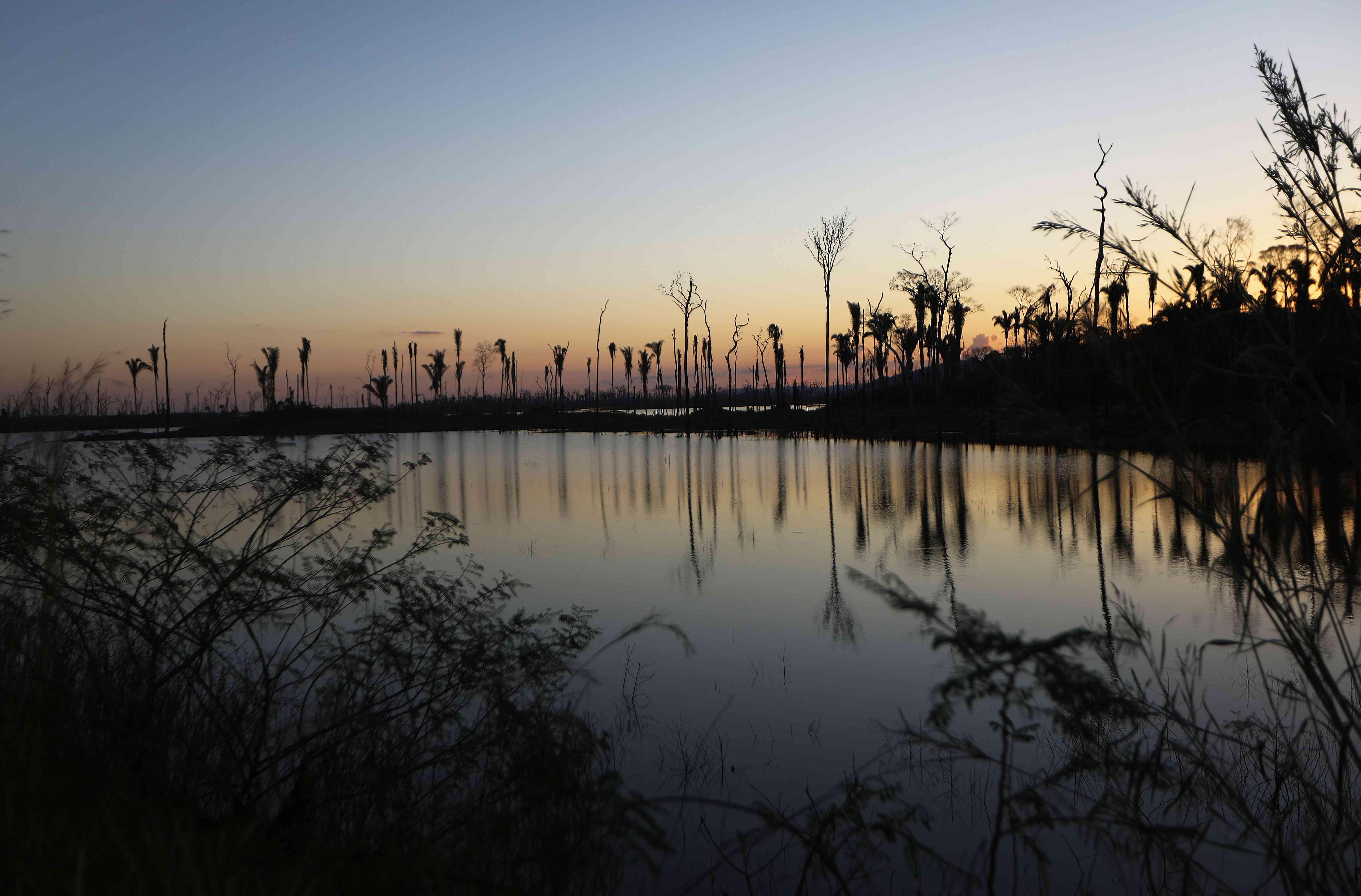 deforestation in Brazil's Western Amazon rainforest, 2017