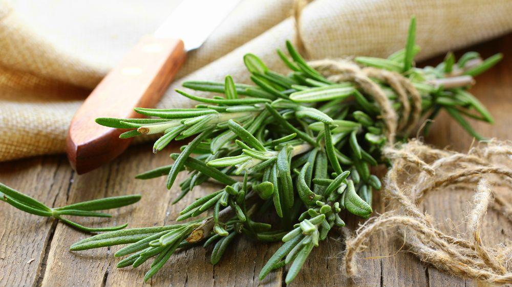 8 Health Benefits of Rosemary