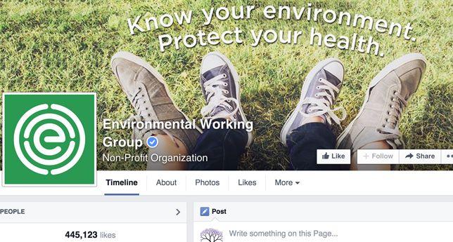 Environmental Working Groups on Facebook
