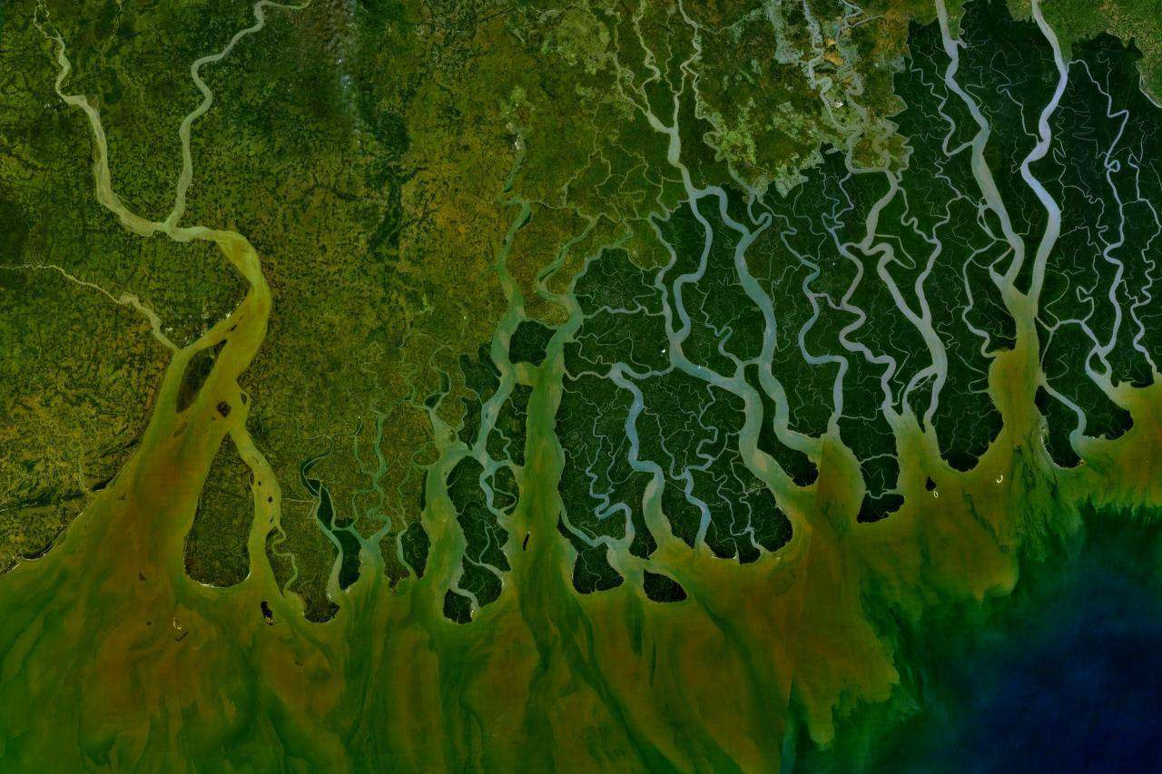 Satellite view of the Ganges River Delta in India
