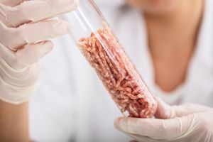 test tube with meat