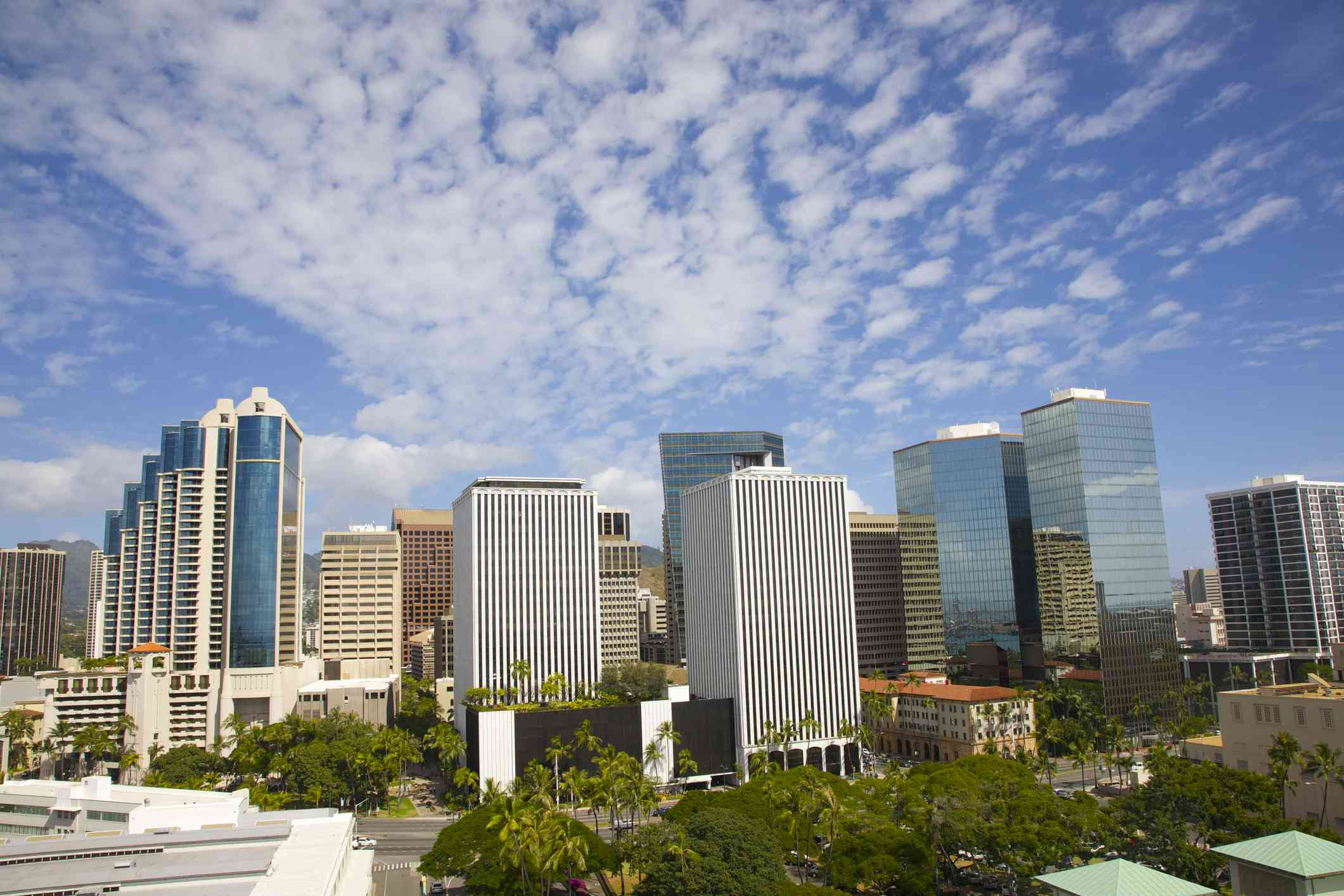 tall modern office towers and residential buildings in the background with a lush green park in the foreground under a blue sky with wispy white clouds on a sunny day in Honolulu
