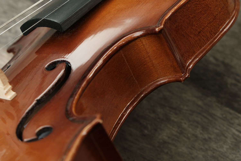 closeup violin and its strings