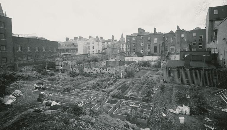 El hombre crea montañas de abono a partir de los desechos de Dublín, además de la perspectiva de un narrador sobre la inmigración