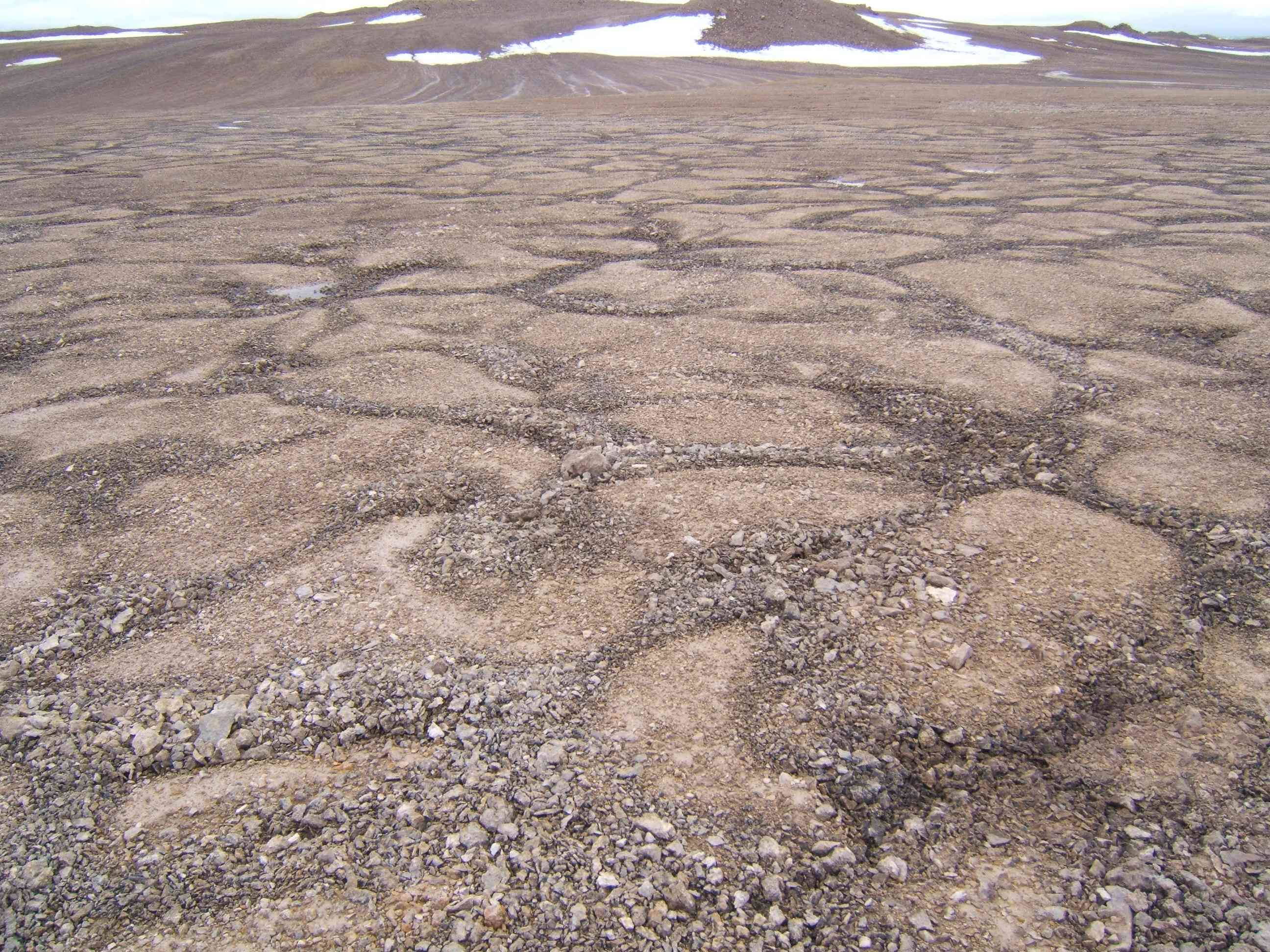 Devon Island's patterned grooves bare a passing resemblance to Mars's surface