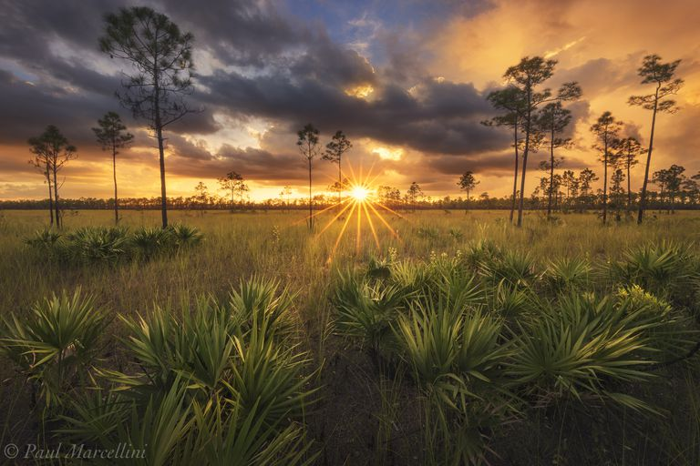 Sunset view across the Florida Everglades