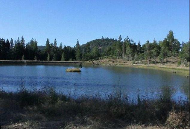 Hombre de Oregon en posesión de 13 millones de galones de agua de lluvia ilícita sentenciado a la cárcel