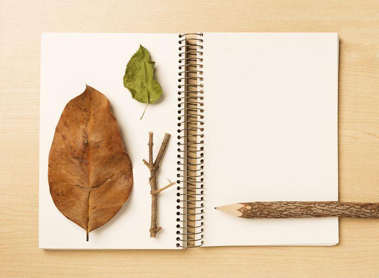 Cómo llevar un diario de la naturaleza