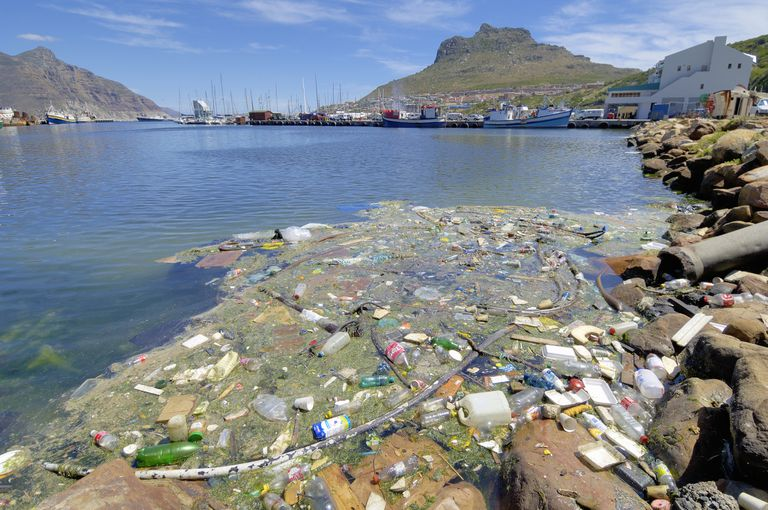 Trash and pollution gathering along rocks in Hout Bay, South Africa