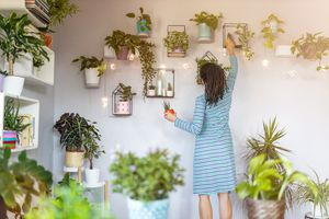 Young Woman Reaching Up to Potted Plants Hung on Wall