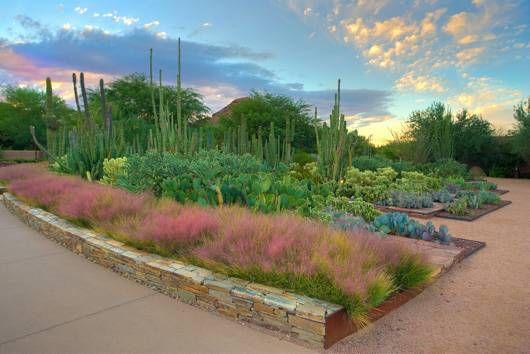 Desert Botanical Garden Ottosen Entry Garden