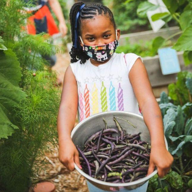 child in garden with green beans