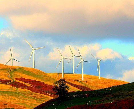 wind farm scotland photo