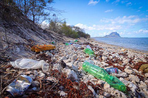 Mauritius litter