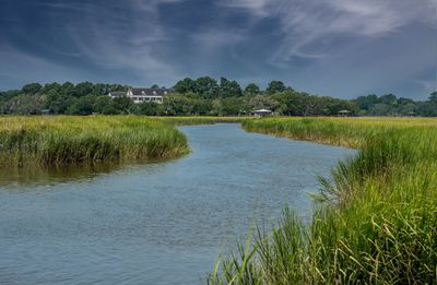 salt marsh view in South Carolina