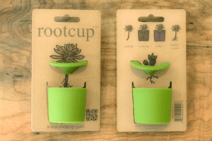 rootcup green