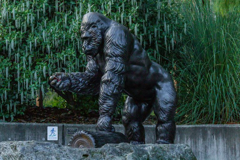 A bronze statue of Ivan the gorilla in a Tacoma zoo.