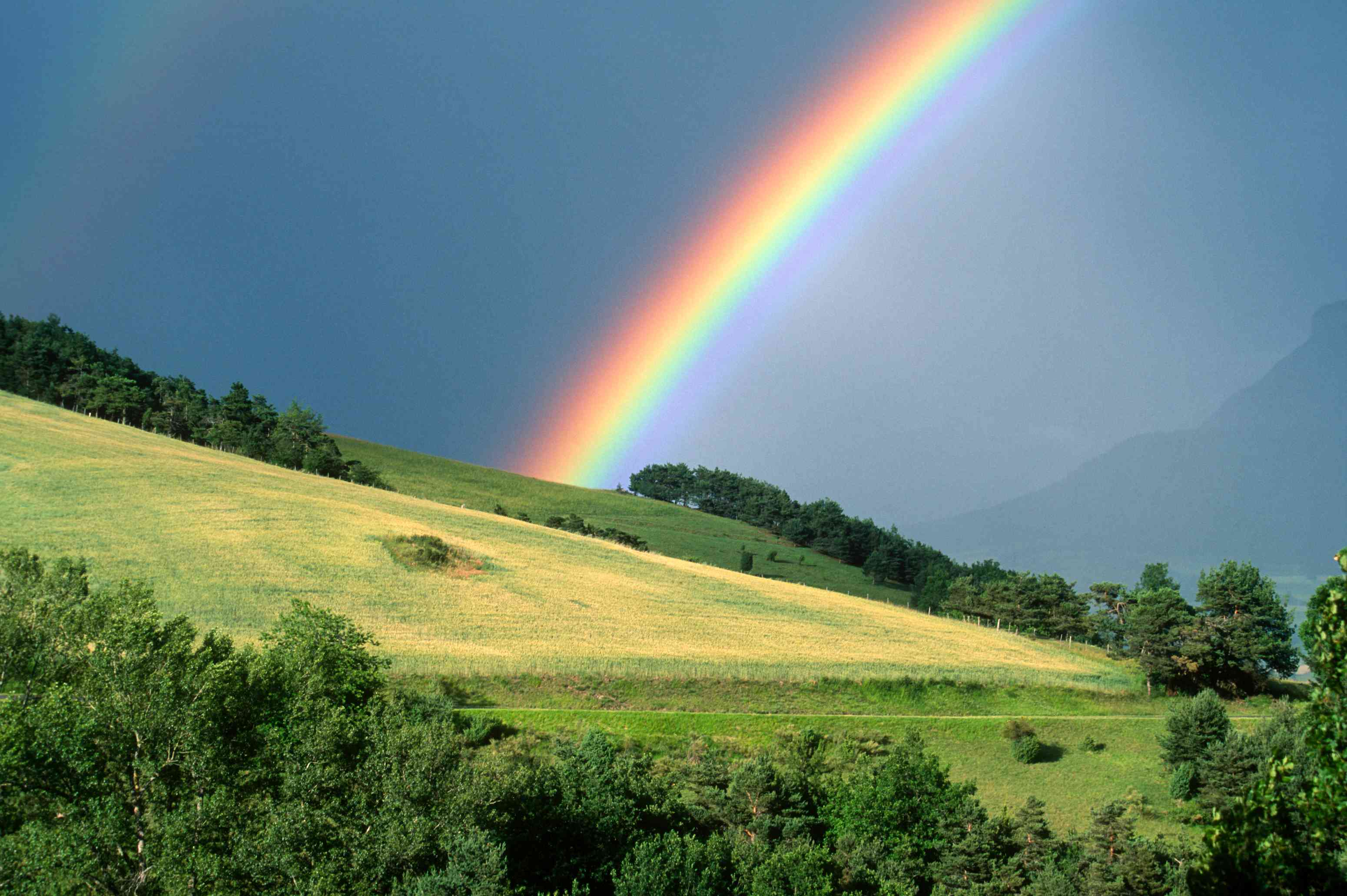 The end of a rainbow with a field in the foreground - stock photo