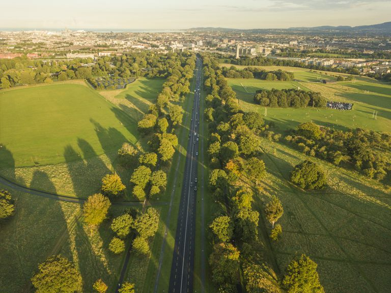 Tree-lined road leading through the middle of Phoenix Park in Dublin with the city center in the distance