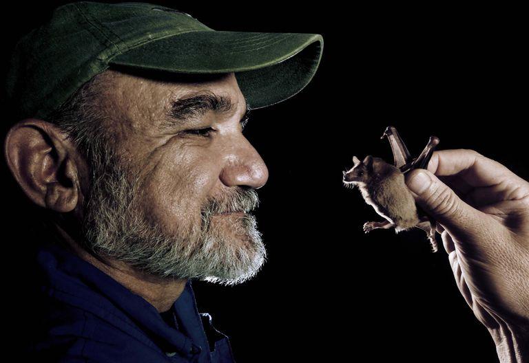 Ecologist Rodrigo Medellin with a lesser long-nosed bat