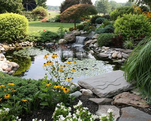 Garden pond with a small waterfall surrounded by plants