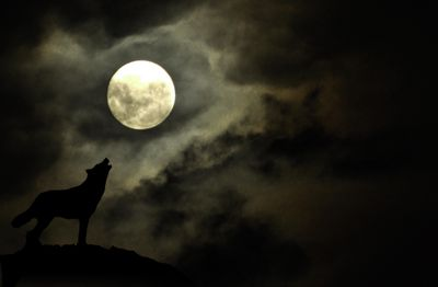 A dramatic full moon with the silhouette a wolf howling at the moon