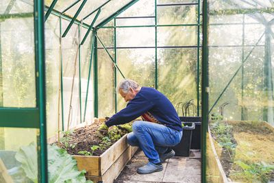 Man working in his greenhouse