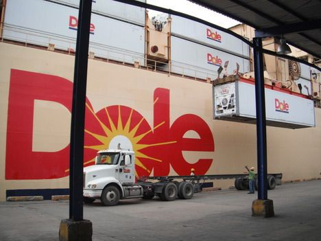 Dole Food Company Fruit Reefer Container Ship