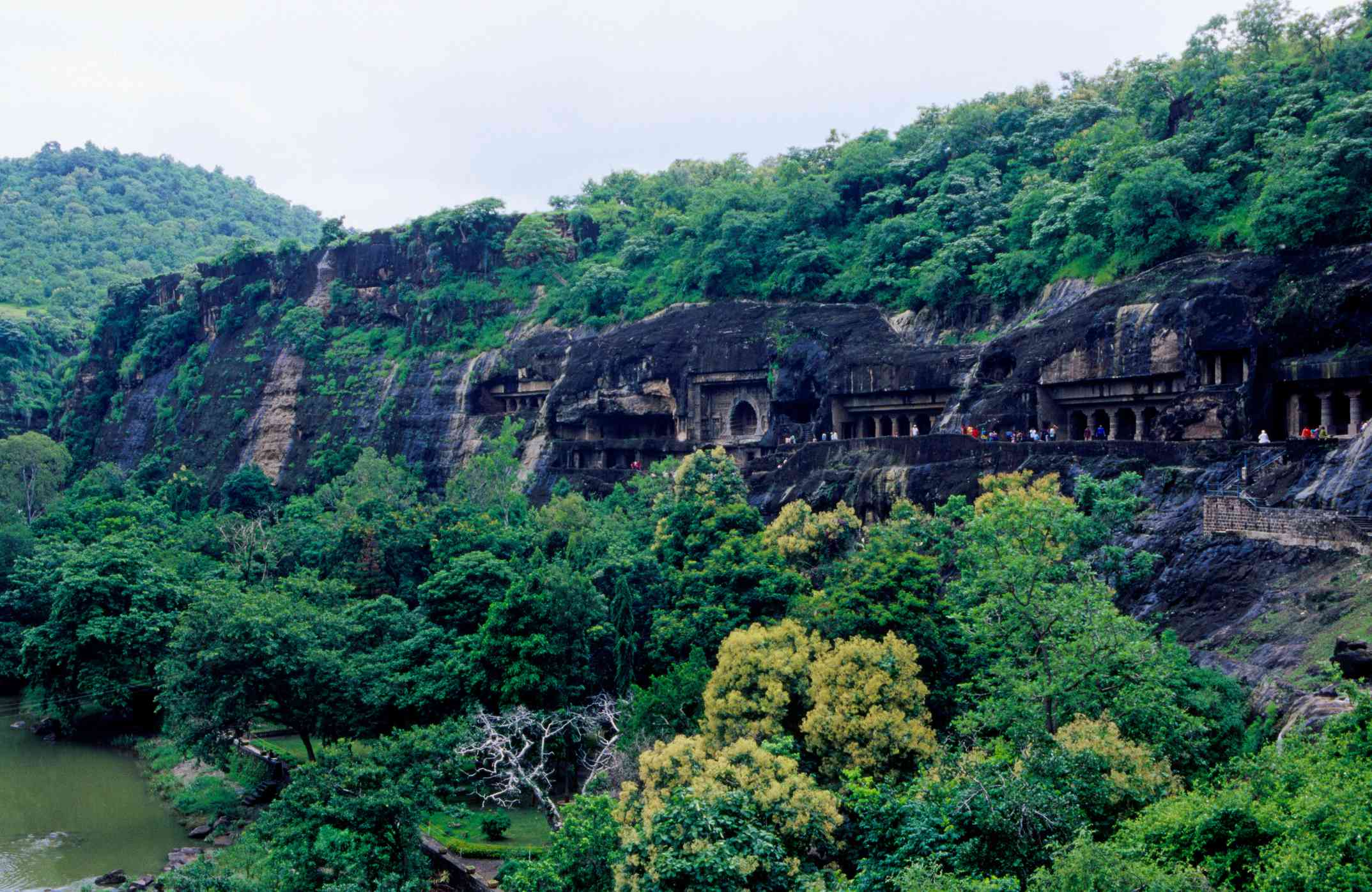 Ajanta caves surrounded by rich, green trees and foliage