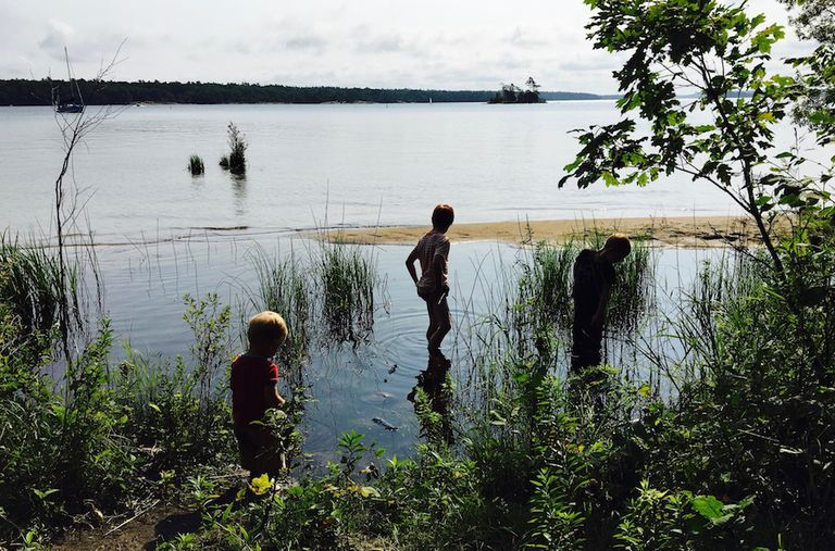 Children playing in a watery area with thick vegetation