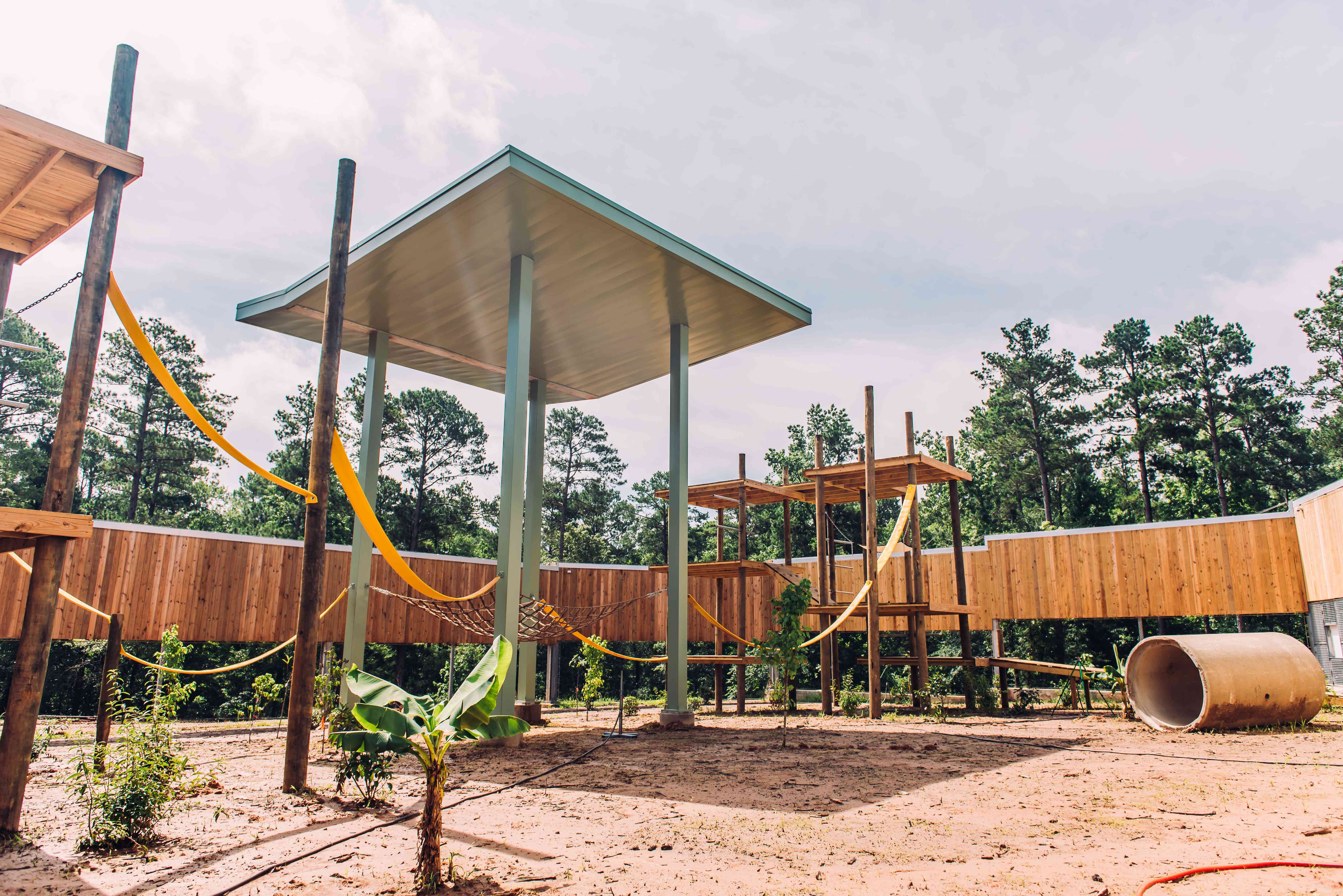 The new corral at Chimp Haven has 15,000 square feet for exploring, playing and climbing.