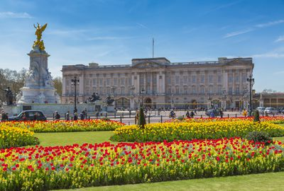 Buckingham Palace in the background with a blue sky above and lawns surrounded by beds of red and yellow blooming flowers