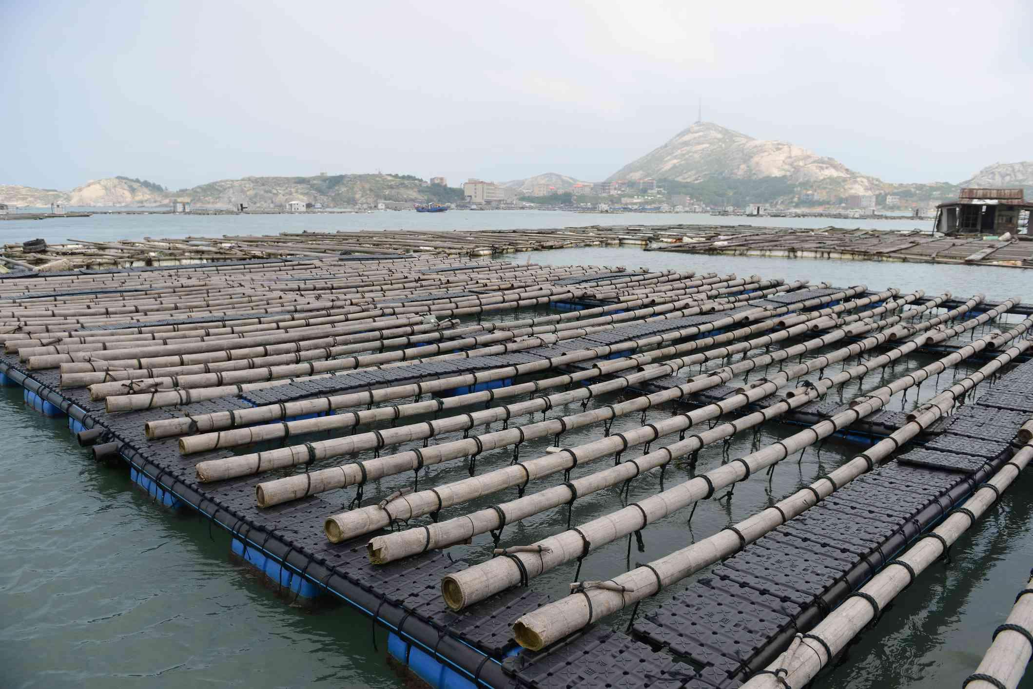 Large abalone farm on Nanri Island in China