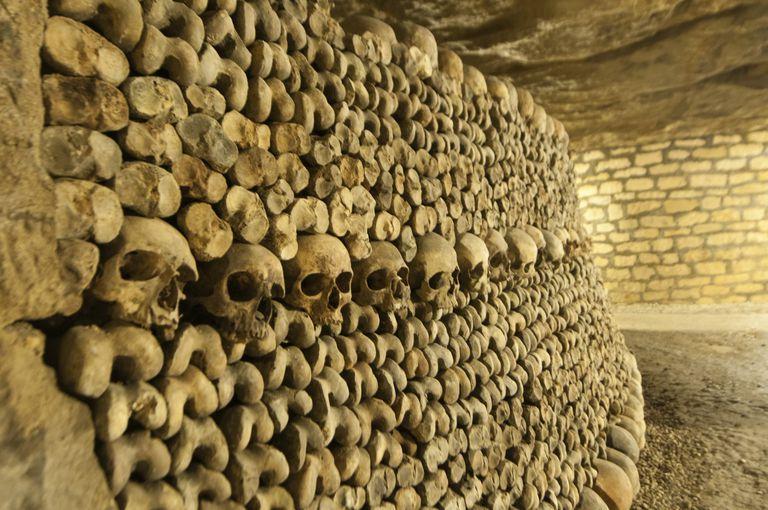 Bones and skulls on an underground wall