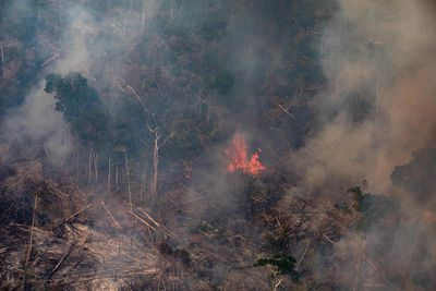 In this aerial image, a fire burns in a section of the Amazon rain forest on August 25, 2019 in the Candeias do Jamari region near Porto Velho, Brazil.