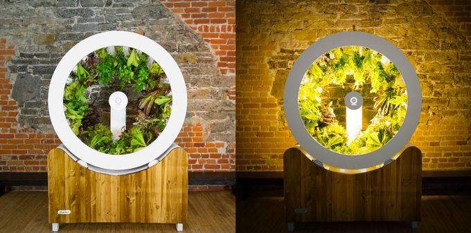 Redondo y Redondo: OGarden orbita las plantas alrededor de la luz para crecer 80 a la vez