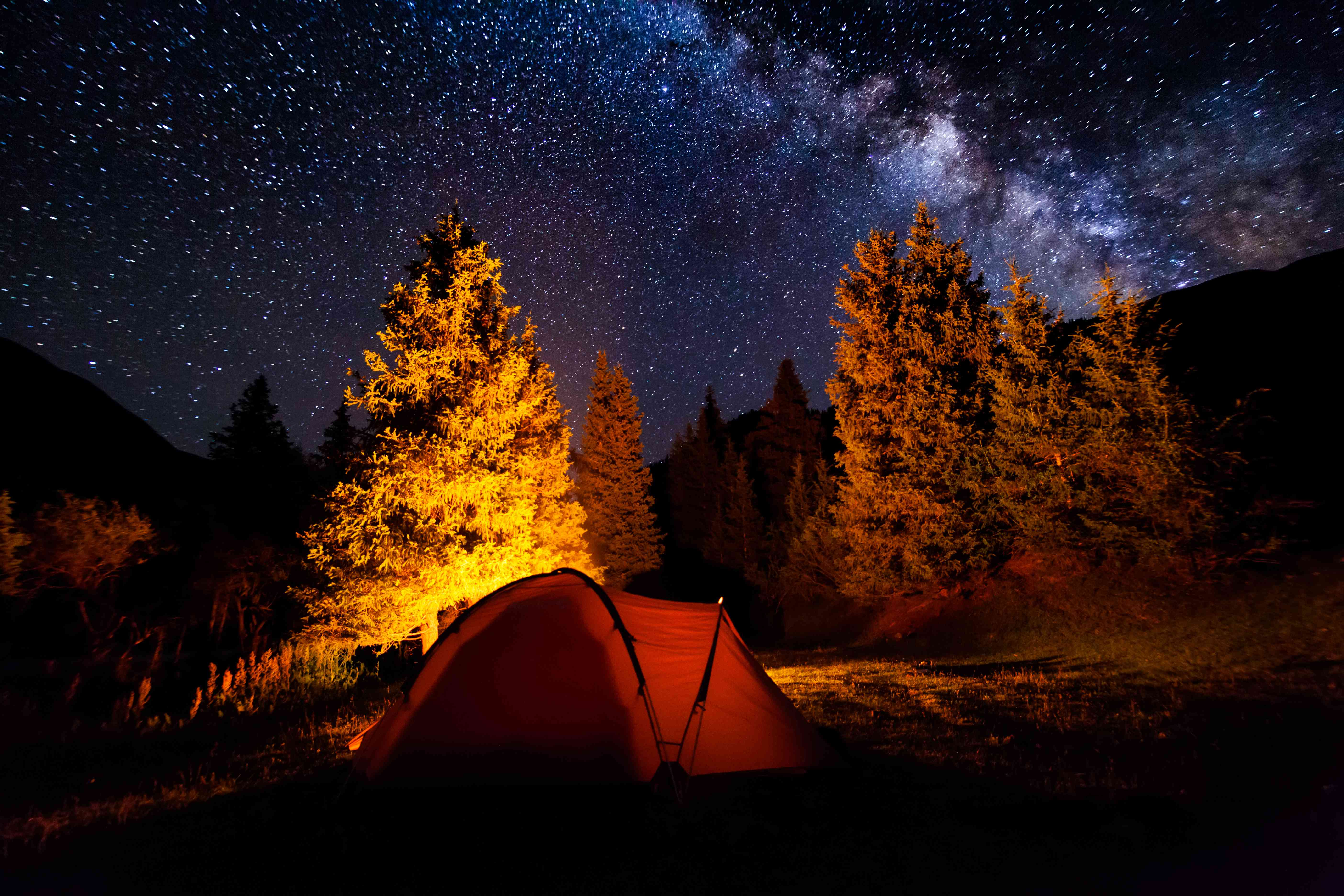 Tent near campfire in the forest under starry night sky