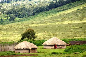 Lush African landscape with traditional houses.