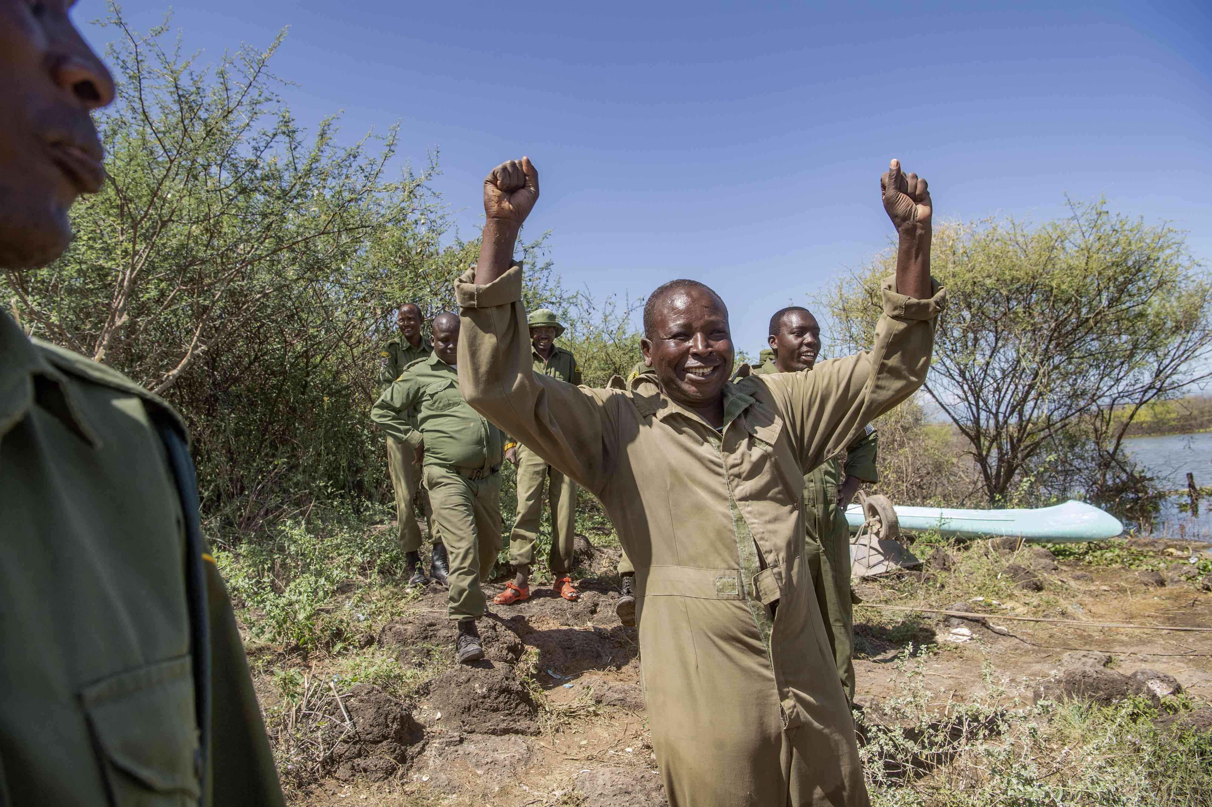 Rescuers cheer after the giraffe is successfully moved.