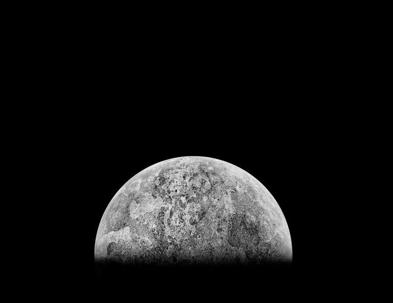'Ploonet' puede ser el nombre más adorable para una luna que abandona el nido