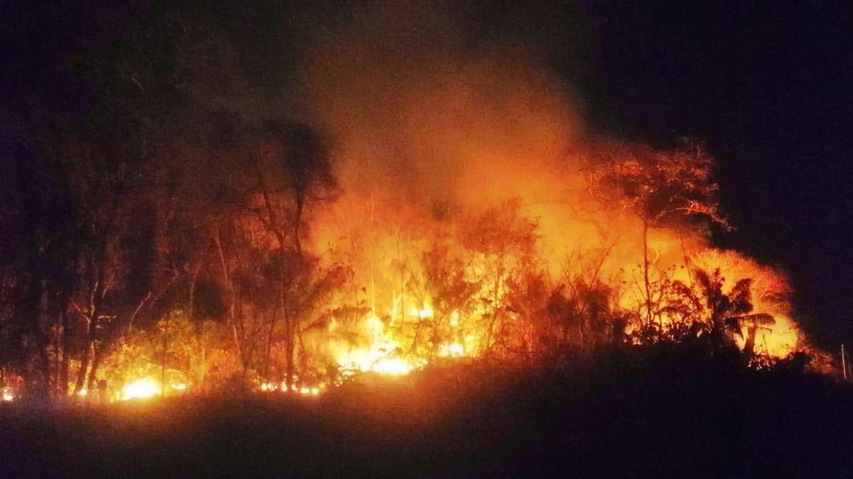 Parque Wildfire