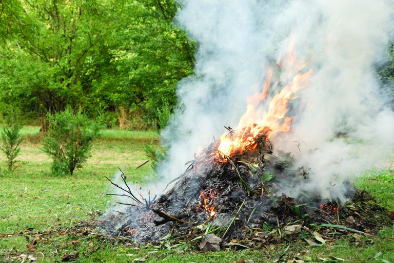 A yard waste fire on grass surrounded by greenery.