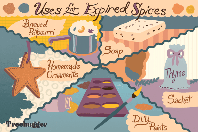uses for expired spices illo
