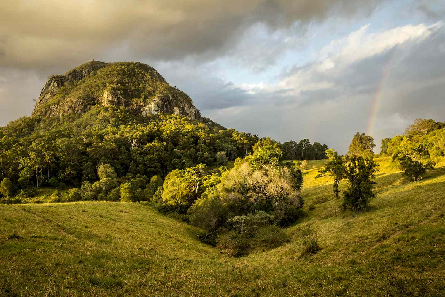 Lush, green trees cover Mount Cooroora as a rainbow casts down upon the hills below it