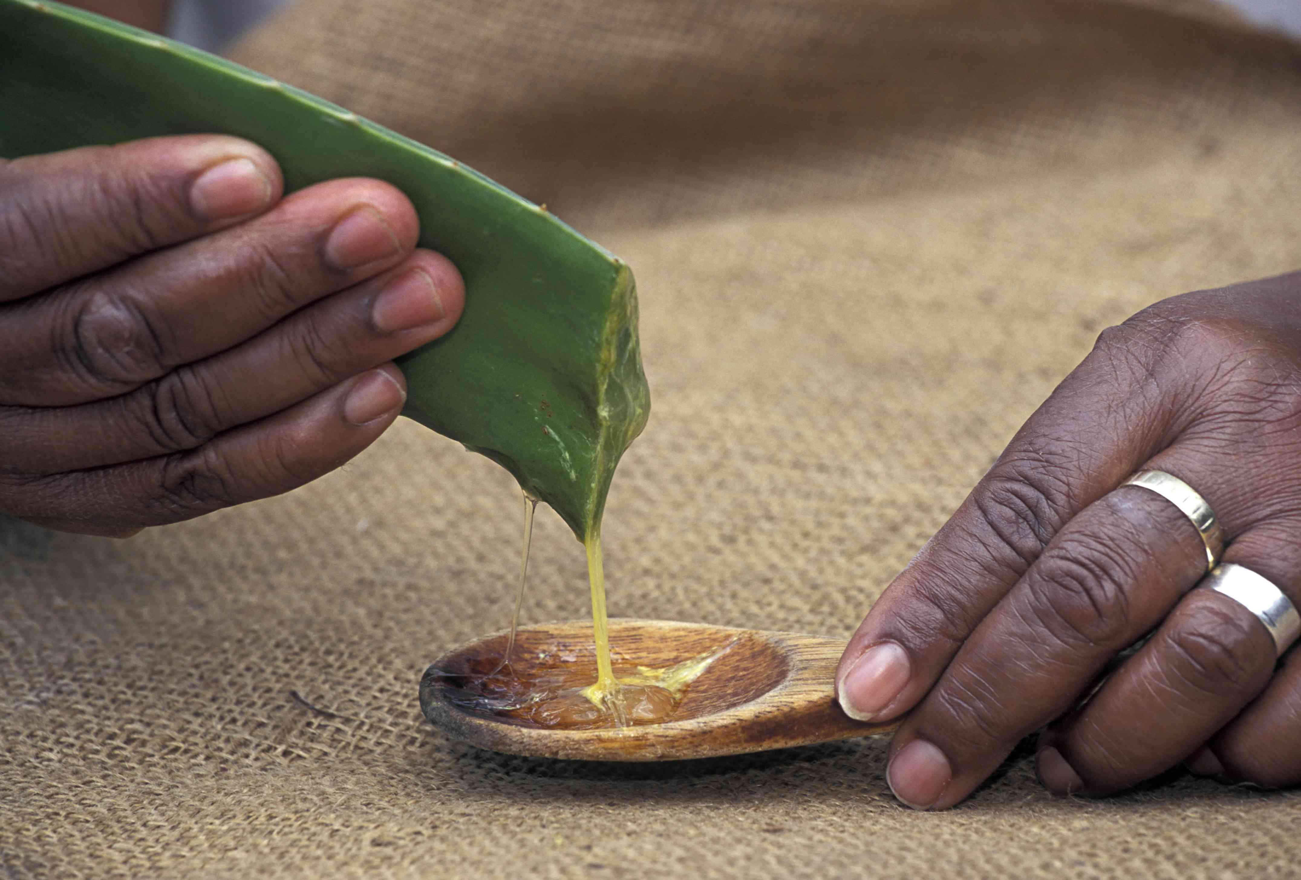 Someone squeezes a cut leaf of aloe vera, with the gel falling onto a wooden spoon below.